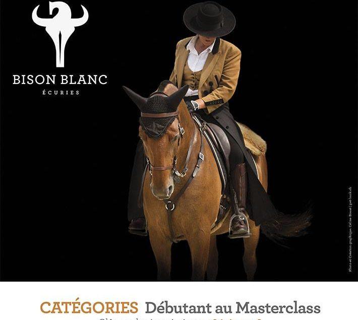 3ème concours d'équitation de travail le 28 et 29 juillet 2018